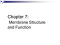 Chapter 7: Membrane Structure and Function. Plasma Membrane The membrane at the boundary of every cell. Functions as a selective barrier for the passage.