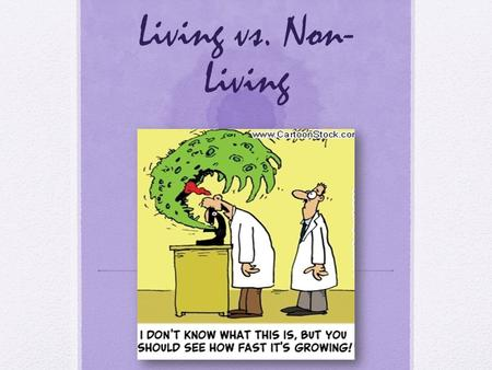 Living vs. Non- Living. Warm-up Biology is the study of LIFE. But how do we know if something is living or non- living?! What characteristics distinguish.