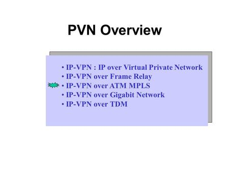 PVN Overview IP-VPN : IP over Virtual Private Network IP-VPN over Frame Relay IP-VPN over ATM MPLS IP-VPN over Gigabit Network IP-VPN over TDM.