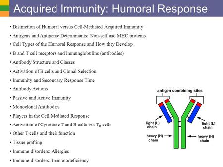 Acquired Immunity: Humoral Response Distinction of Humoral versus Cell-Mediated Acquired Immunity Antigens and Antigenic Determinants: Non-self and MHC.