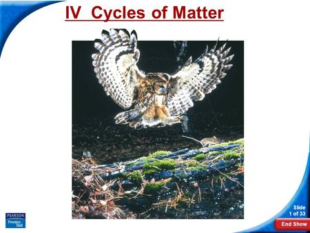 End Show Slide 1 of 33 IV Cycles of Matter. Slide 2 of 33 Copyright Pearson Prentice Hall Cycles of Matter How does matter move among the living and nonliving.