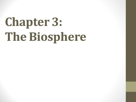 Chapter 3: The Biosphere. Warm Up 1. On average, what percentage of the energy in an ecosystem is transferred from one trophic level to the next? 2. Where.