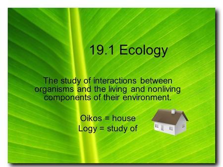 unit 8 ecology do now objective 1 define ecology ecosystem abiotic factor biotic factor. Black Bedroom Furniture Sets. Home Design Ideas