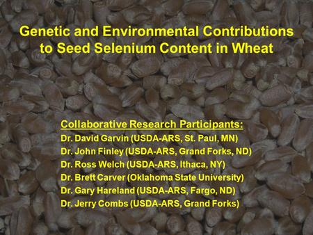 Genetic and Environmental Contributions to Seed Selenium Content in Wheat Collaborative Research Participants: Dr. David Garvin (USDA-ARS, St. Paul, MN)