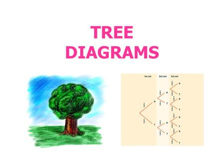 TREE DIAGRAMS. Tree Diagrams and Possible Outcomes Tree diagrams, as the name suggests, look like a tree as they branch out symmetrically. Tree diagrams.