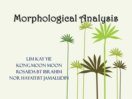Morphological Analysis Lim Kay Yie Kong Moon Moon Rosaida bt ibrahim Nor hayati bt jamaludin.