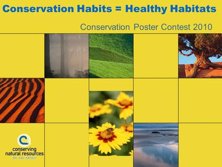 Conservation Habits = Healthy Habitats Conservation Poster Contest 2010.