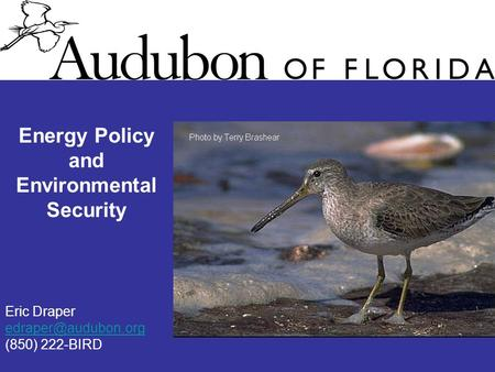 Energy Policy and Environmental Security Eric Draper (850) 222-BIRD.