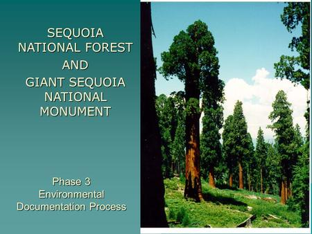 Phase 3 Environmental Documentation Process SEQUOIA NATIONAL FOREST AND GIANT SEQUOIA NATIONAL MONUMENT.