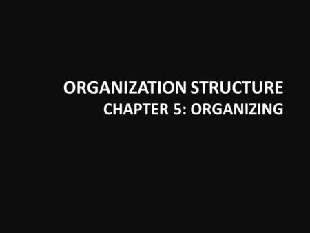 ORGANIZATION STRUCTURE CHAPTER 5: ORGANIZING. Functional Structure.
