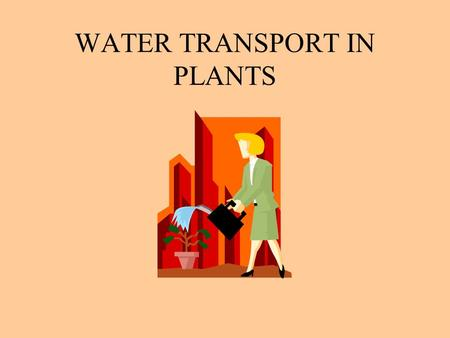 WATER TRANSPORT IN PLANTS. An Overview of Transport in Plants.