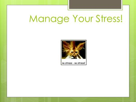 Manage Your Stress!. Stress Stress - the reaction of the body and mind to everyday challenges and demands.