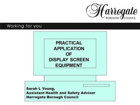 PRACTICAL APPLICATION OF DISPLAY SCREEN EQUIPMENT Sarah L Young, Assistant Health and Safety Adviser Harrogate Borough Council.