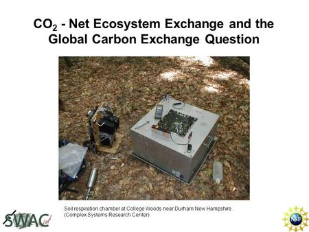 CO 2 - Net Ecosystem Exchange and the Global Carbon Exchange Question Soil respiration chamber at College Woods near Durham New Hampshire. (Complex Systems.