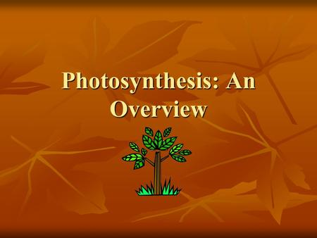 Photosynthesis: An Overview 8-2. The key cellular process identified with energy production is photosynthesis The key cellular process identified with.