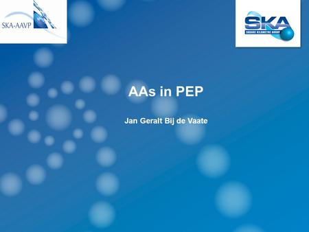 AAs in PEP Jan Geralt Bij de Vaate. PEP Project Execution Plan for the pre construction phase of the SKA Consortium to be formed AA-low ready for construction.