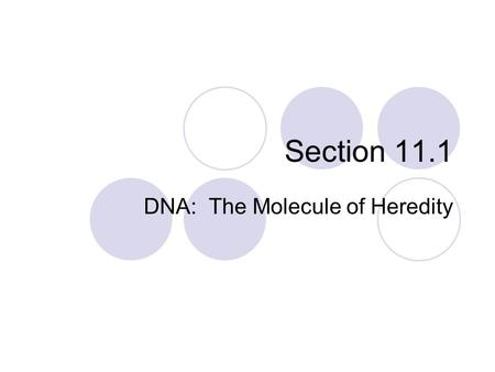 Section 11.1 DNA: The Molecule of Heredity. Within the structure of DNA, is the complete instructions for manufacturing all the proteins for an organism.