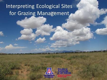 Interpreting Ecological Sites for Grazing Management.