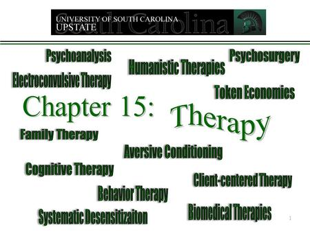 1. Therapy Two main categories:  The Psychological Therapies  The Biomedical Therapies The Psychological Therapies – called psychotherapy Cause of symptoms.