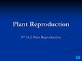 Plant Reproduction 8 th 16.2 Plant Reproduction. Plant Reproduction Plants reproduce by pollen, spores, or seeds Plants reproduce by pollen, spores, or.