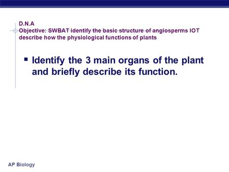 AP Biology D.N.A Objective: SWBAT identify the basic structure of angiosperms IOT describe how the physiological functions of plants  Identify the 3.
