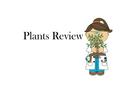 Plants Review. ___________ is when leaves make food for the plant using water, sunlight, carbon dioxide and chlorophyll. Answer: photosynthesis.