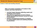 After successful completion of 4 Units in this Lesson, you have learned to: List the fungal diseases affecting seeds and seedlings of groundnut. Describe.