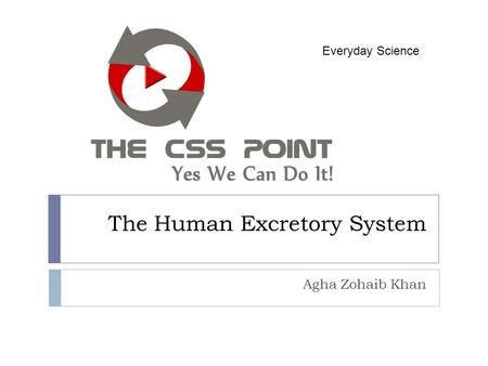 The Human Excretory System Agha Zohaib Khan Everyday Science.