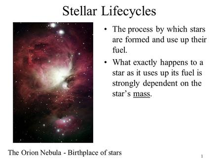 1 Stellar Lifecycles The process by which stars are formed and use up their fuel. What exactly happens to a star as it uses up its fuel is strongly dependent.