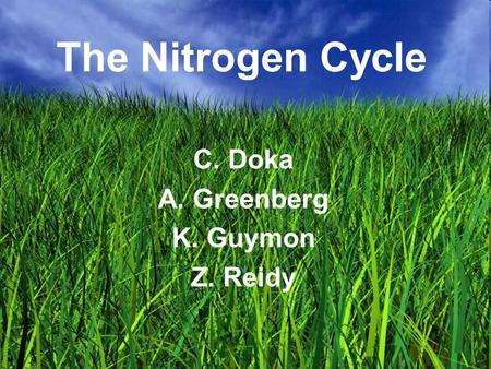 The Nitrogen Cycle C. Doka A. Greenberg K. Guymon Z. Reidy.