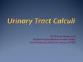 Dr. Robab Maghsoudi Hashemi nijad Kidney Center (HKC) Iran University Medical ciences (IUMS)