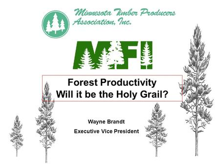 Forest Productivity Will it be the Holy Grail? Wayne Brandt Executive Vice President.