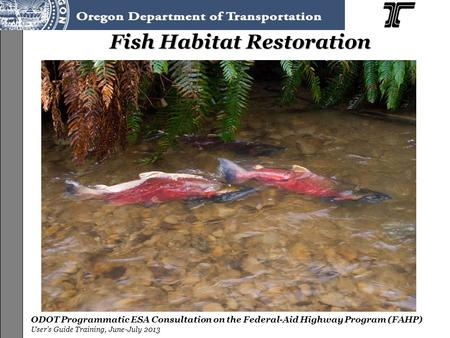 ODOT Programmatic ESA Consultation on the Federal-Aid Highway Program (FAHP) User's Guide Training, June-July 2013 Fish Habitat Restoration.