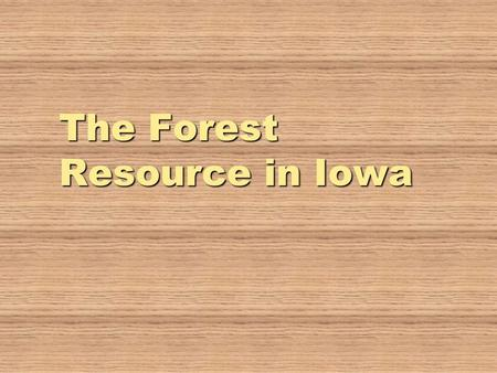 The Forest Resource in Iowa. Iowa's Forest Cover   Iowa's forests cover 8% of our landscape   87% of our 2,97,000 acres are owned by private landowners.