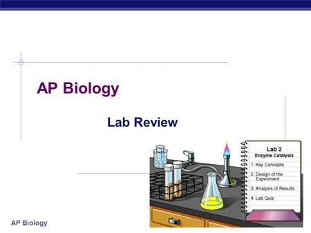 AP Biology Lab Review. AP Biology AP Biology Required Labs  Lab 1: Diffusion & Osmosis  Lab 2: Enzyme Catalysis  Lab 3: Mitosis & Meiosis  Lab 4: