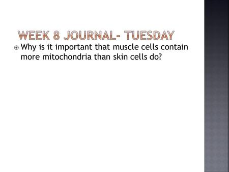 Why is it important that muscle cells contain more mitochondria than skin cells do?