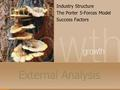 External Analysis Industry Structure The Porter 5-Forces Model Success Factors.