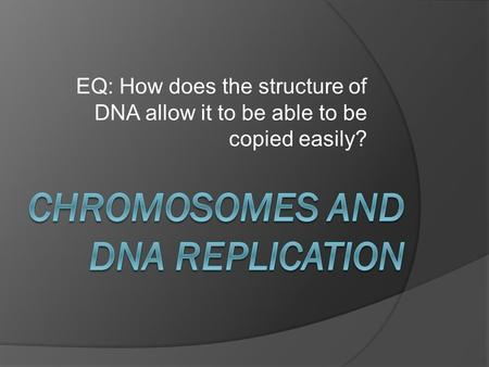 EQ: How does the structure of DNA allow it to be able to be copied easily?