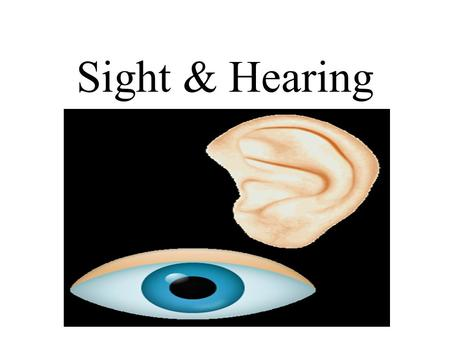 Sight & Hearing. Sense of Hearing Outer (External) Ear The outer ear consists of three parts Auricle- An earlike structure; the portion of the heart that.