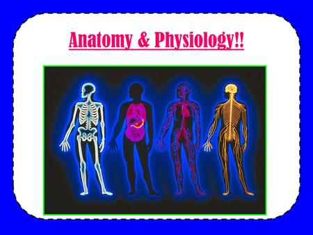 Anatomy & Physiology!!. DO NOW Lets review some biology… –How are our bodies organized? –What are the characteristics of life? –What factors do our bodies.
