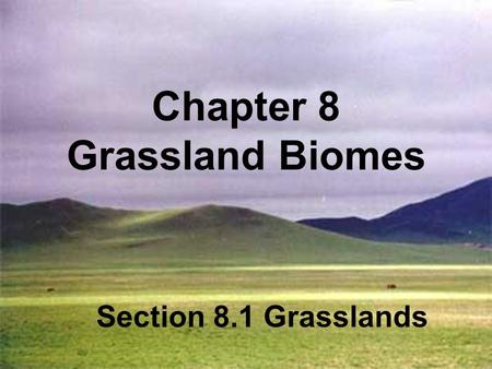 Chapter 8 Grassland Biomes Section 8.1 Grasslands.