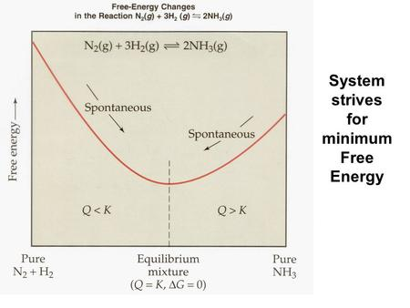 System strives for minimum Free Energy. aA + bB cC + dD G0G0 rxn d  G 0 (D) f c  G 0 (C) f = [+] - b  G 0 (B) f a  G 0 (A) f [+] G0G0 rxn n 