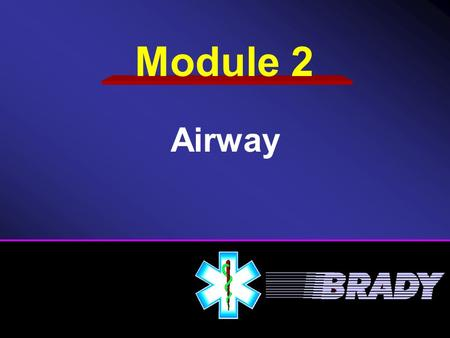 Airway Module 2. Airway The Respiratory System Opening the Airway Inspecting the Airway Airway Adjuncts Clear/Maintain Airway Breathing Ventilation Techniques.
