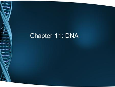 Chapter 11: DNA. In the beginning… Is the genetic material in cells protein or DNA? In order to be the genetic material, it must be… 1.Able to store information.
