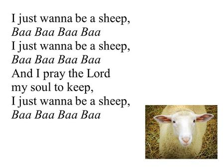 I just wanna be a sheep, Baa Baa I just wanna be a sheep, Baa Baa And I pray the Lord my soul to keep, I just wanna be a sheep, Baa Baa.