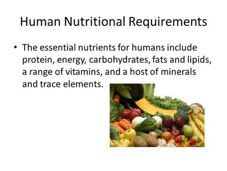 Human Nutritional Requirements The essential nutrients for humans include protein, energy, carbohydrates, fats and lipids, a range of vitamins, and a host.