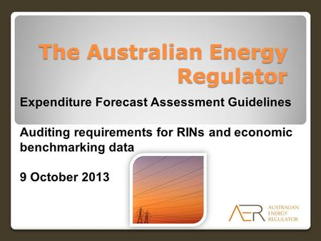 The Australian Energy Regulator Expenditure Forecast Assessment Guidelines Auditing requirements for RINs and economic benchmarking data 9 October 2013.