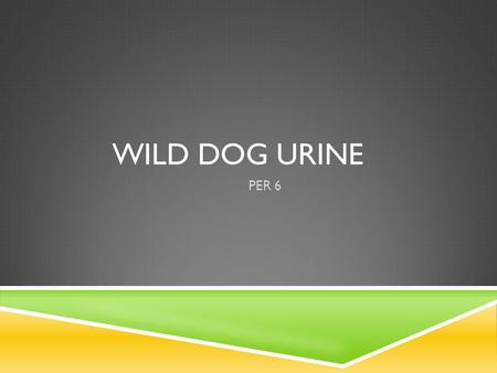 WILD DOG URINE PER 6. WHAT QUESTION DO YOU THINK SCIENTISTS ARE TRYING TO SOLVE?  USE THESE WORDS AS CLUES:  dog urine, conserve, scientists, endangered.