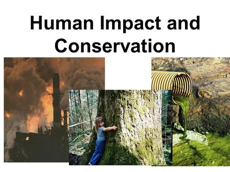 Human Impact and Conservation. Hey Mom!! That's me!!!!!!!!!!!!!!