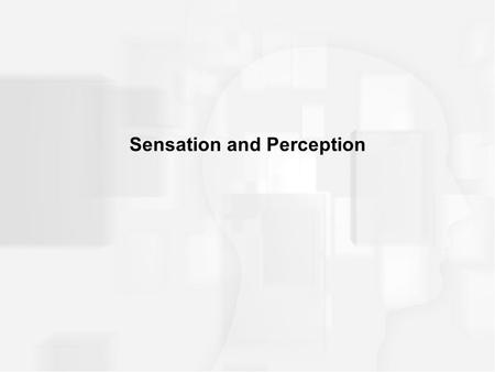 Sensation and Perception. THREE DEFINITONS Adaptation: –the decreasing response of the sense organs, the more they are exposed to a continuous level of.